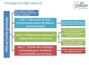 strategie-leader petit
